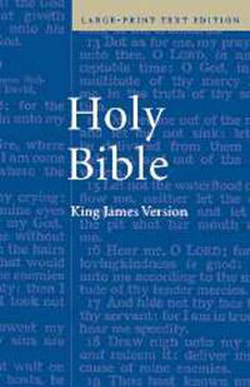 Picture of AV LARGE PRINT BIBLE HB