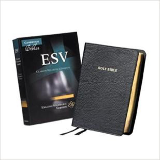 Picture of ESV REFERENCE CLARION BLACK CALF SPLIT LEATHER