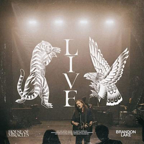 Picture of HOUSE OF MIRACLES LIVE CD