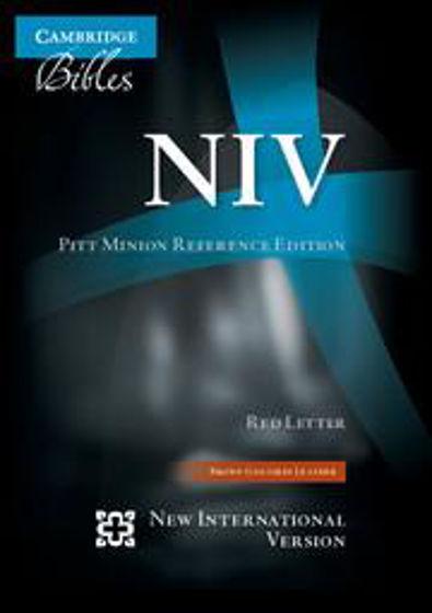Picture of NIV PITT MINION BROWN GOATSKIN LEATHER