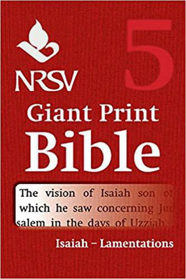 Picture of NRSV VOLUME 5- ISAIAH- LAMENTATIONS GIANT PRINT