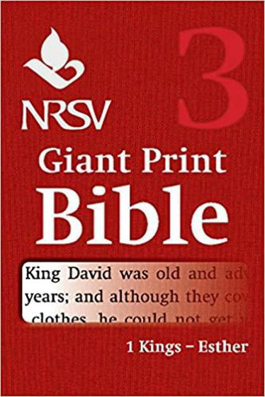Picture of NRSV VOLUME 3- 1 KINGS- ESTHER GIANT PRINT