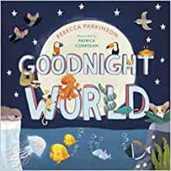 Picture of GOODNIGHT WORLD PB